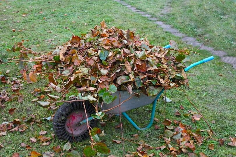 Компост из листвы в мешках