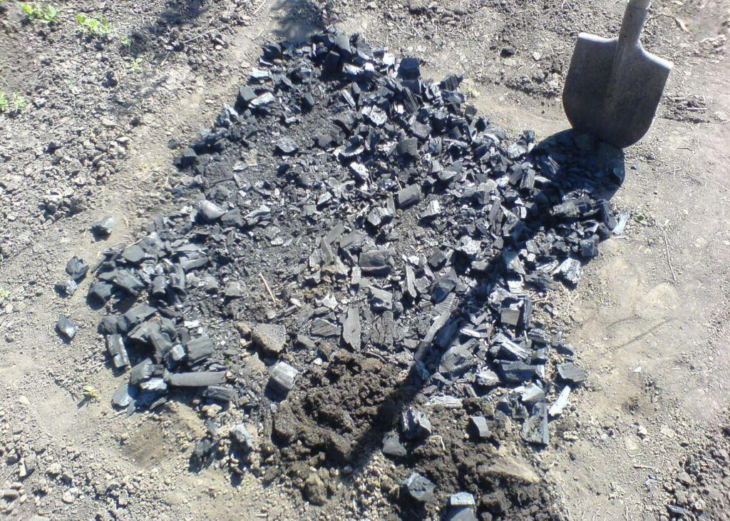 Каменный уголь как удобрение для огорода