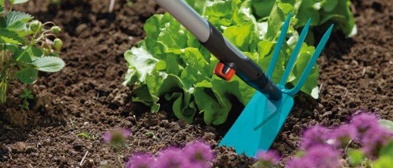 Норма внесения доломитовой муки для раскисления почвы