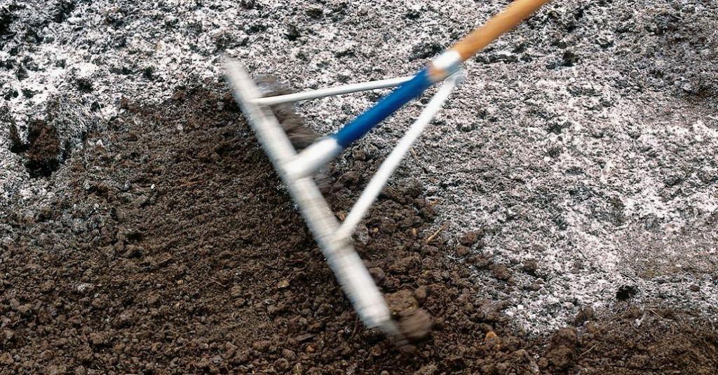 Чем раскислить почву на огороде