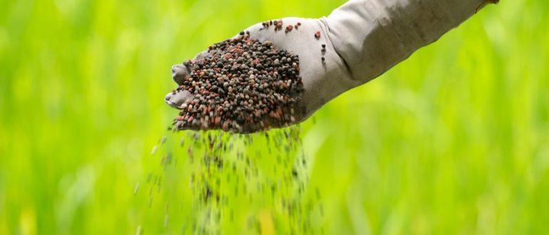 Что такое комплексное удобрение