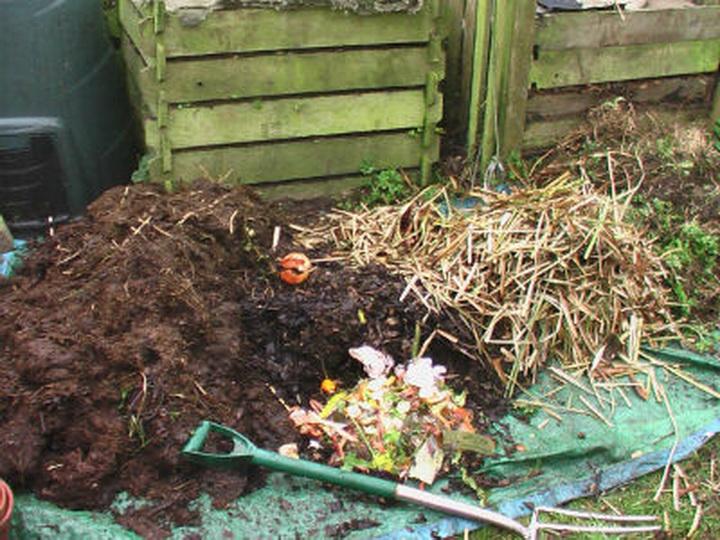 Что такое компост и перегной