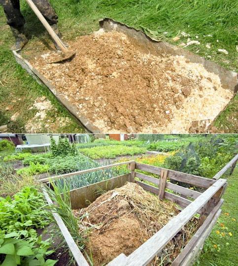 Опилки для огорода: польза и вред, как использовать на даче в качестве удобрения, сыпать в сад