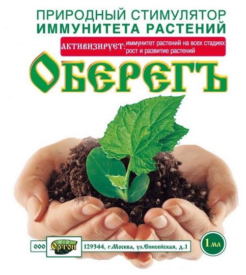 Семена перца: как обработать перед посевом на рассаду